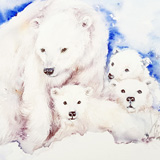 The White Bear Family