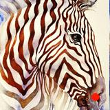 Umber Stripes Zebra