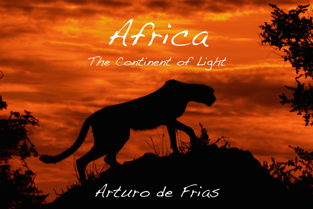 Book Cover - Africa