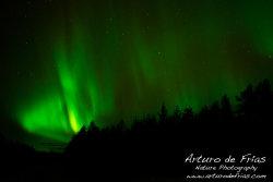 Aurora Borealis II