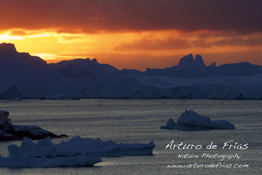 Icebergs on Fire