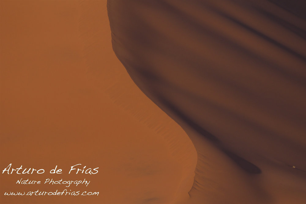 Red Dunes Abstract 1
