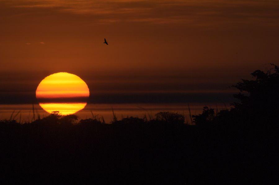 Sunset, Pantanal, Brazil