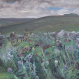 O17 Thistles 2006 oil 61x61 SOLD