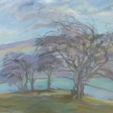 O34 Hawthorn above Blades 2015 oil 68x61cm SOLD