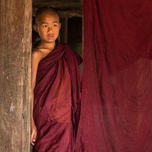 Shy Novice Monk