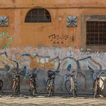 Bikes Pisa