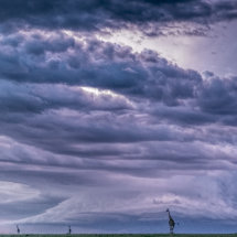 Storm over the Mara