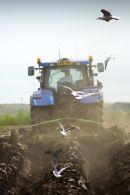 Ploughing - McCain