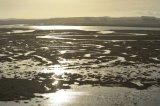 Hut Marsh Tide rising