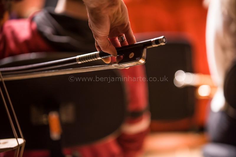 Double-bass-bow-©www.benjaminharte.co.uk-17