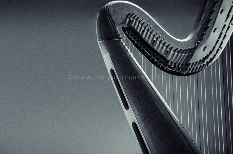 Harp-©www.benjaminharte.co.uk-63