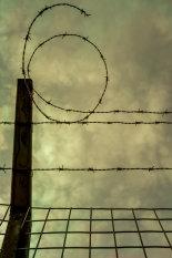 number-six-in-barbed-wire-©benjaminharte