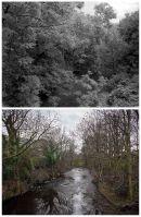 2 Leppings Lane 1989 & 2009