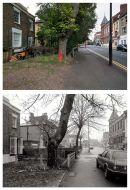 Rectory Road 2011 & 1987