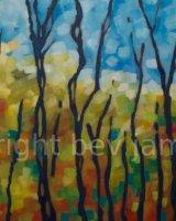 Lumière des arbres - automne