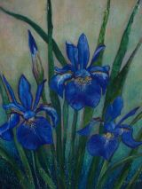 Blue Iris Trio