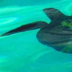 WT01 Turtle
