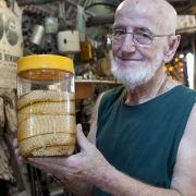 Man with king brown snake, Lightening Ridge, Australia