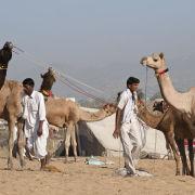 Camel Fair, Pushkar, India