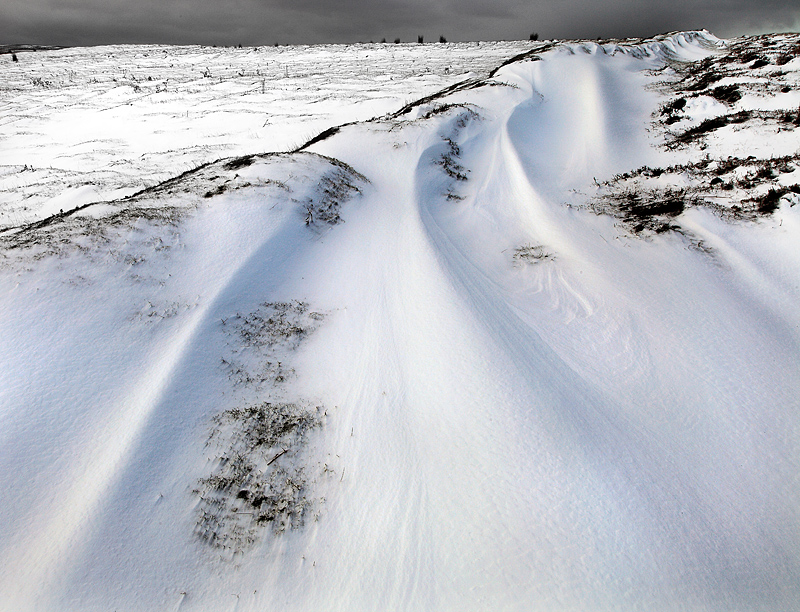 Moorland Winter 3