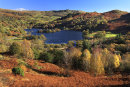Rydal Water Autumn 1