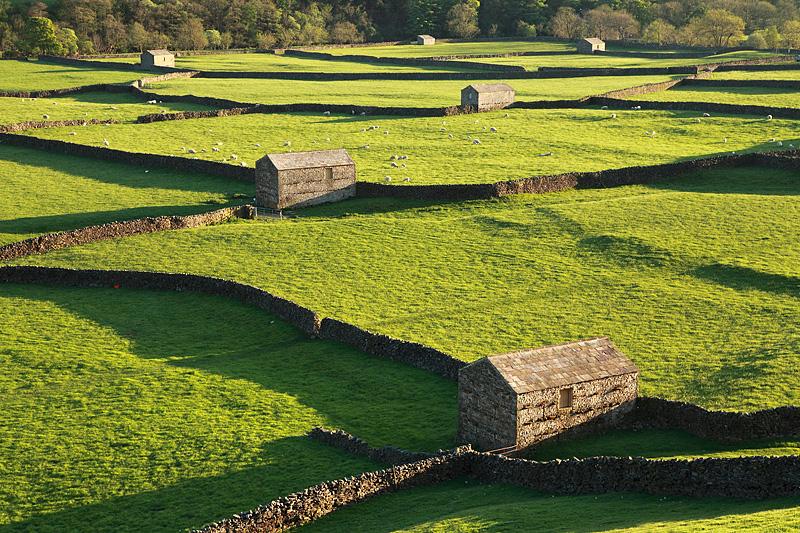 Gunnerside Barns 2