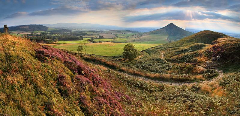 Roseberry Moor