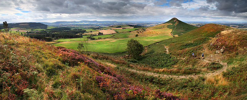 Roseberry Panorama