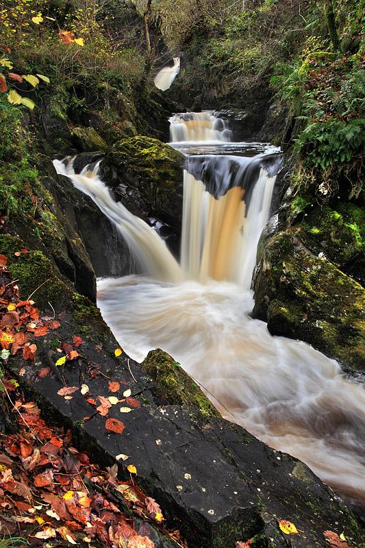 Peccs Twin Falls