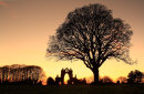 Guisborough Priory Winter Sunset