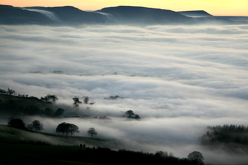 Vale of Fog