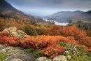 Rydal Autumn