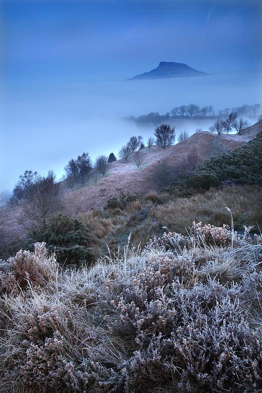Roseberry Mist and Fog 1