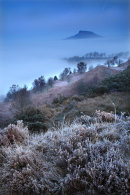 Roseberry Mist and Fog 1