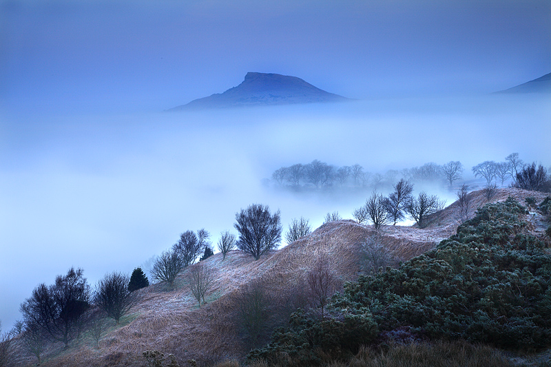 Roseberry Mist and Fog 3