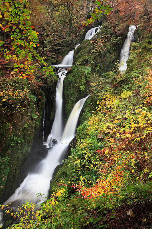 Stock Ghyll Force 2