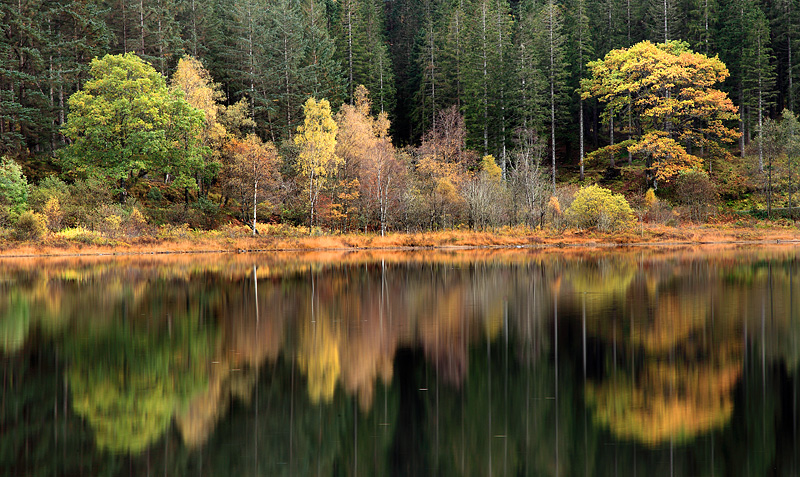 Loch Achray Reflections 1