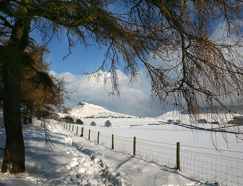 Roseberry Winter Walk