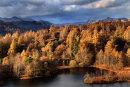 Langdales Autumn 1