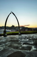 Whitby Whalebone Frost