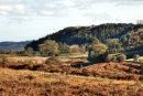 Autumn in Hutton-Le-Hole