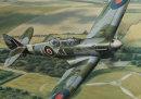 Spitfire detail
