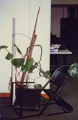 Reading Room, 1997