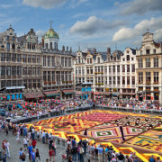 Flower Carpet of Brussels