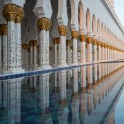 Reflected Columns