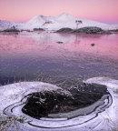Black Mount, pink dawn