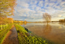 River Parrett