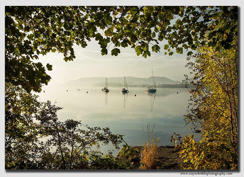 Boats-through-Autumn-Trees---W5D35052