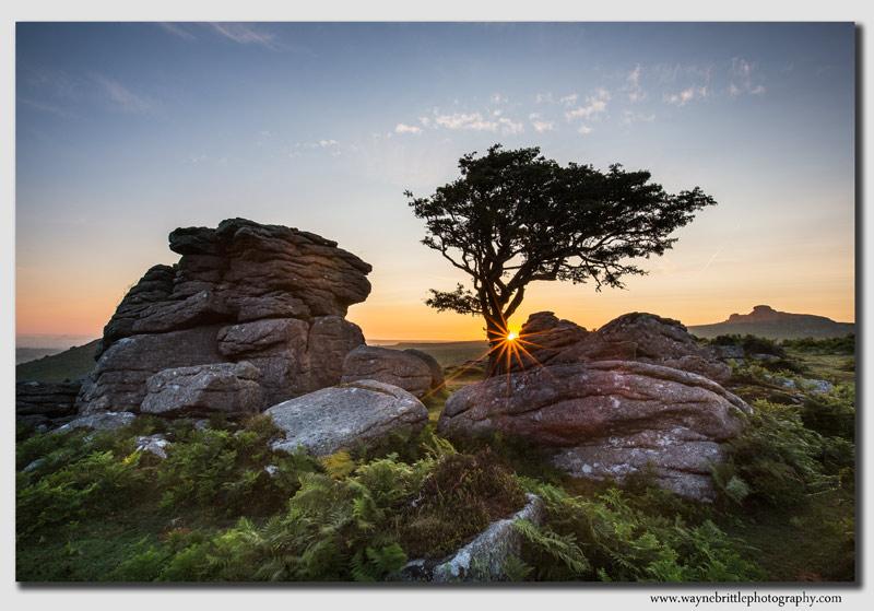 Dartmoor Torr Sunburst - W5D34625